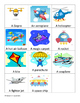 Irregular Past Tense - Flew and categories