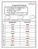 Irregular Nouns Worksheets Skill Practice Irregular Plural