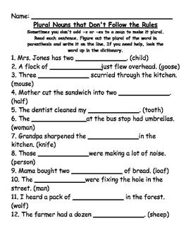 Irregular Plural Nouns and Plural Nouns