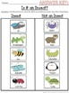 Is it an Insect? Cut and Paste Sorting Activity