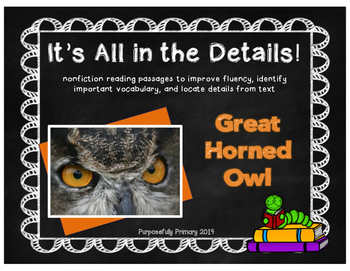 It's All In The Details!  Owls Close Reading