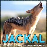 Jackal: Informational Article, QR Code Research & Fact Sort