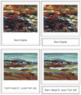 Jackson (Alexander Young) 3-Part Art Cards - Color Borders