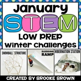 STEM Challenges for January