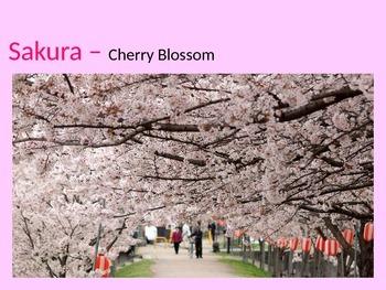 Japanese Cherry Blossom Powerpoint
