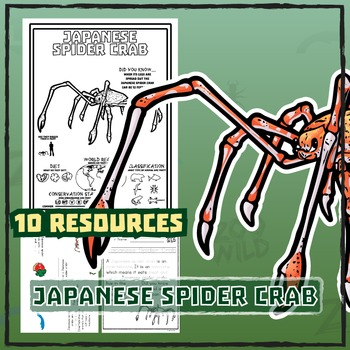 Japanese Spider Crab -- 10 Resources -- Coloring Pages, Re