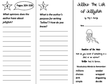 Jellies: The Life of Jellyfish Trifold - Journeys 2nd Grad