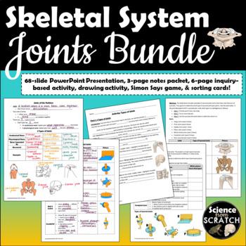 Joints Lesson Plan Bundle