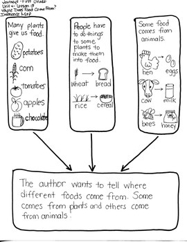 Journeys First Grade: Where Does Food: Unit 4/Lesson 18 IN