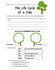 """Journeys """"From Seed to Plant"""" Leveled Reader Story Questions"""
