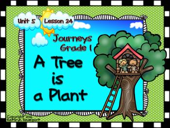 Journeys Grade 1 A Tree is a Plant Unit 5 Lesson 24