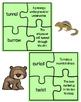 Journeys: How Chipmunk Got His Stripes