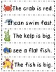Journeys® Literacy Activities - At Home in the Ocean- Grade 1