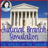 "Judicial Branch Simulation: ""No Vehicles on the Sidewalk"""