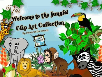 Jungle Clip Art Collection