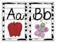 Jungle Theme Large Letter Cards with beginning sounds and
