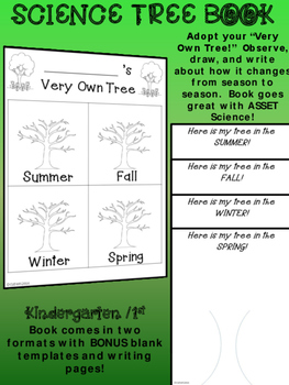 KINDERGARTEN 1st SCIENCE TREES BOOK Adopt a tree. Observe,