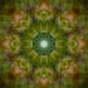 Photoshop: Kaleidoscope
