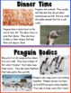 Kid Friendly Penguin Research