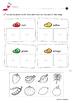 Color Worksheets *Printables*