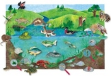 Kindergarten Environment Study