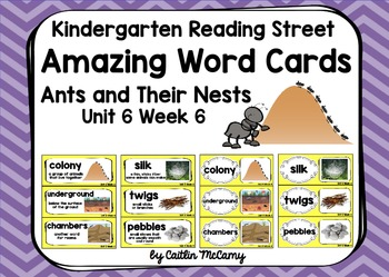 Kindergarten Reading Street Amazing Word Cards Ants and Th