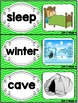 Kindergarten Reading Street Amazing Word Cards Bear Snores On