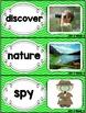 Kindergarten Reading Street Amazing Word Cards Nature Spy