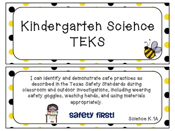 Kindergarten Science TEKS~ Bee Theme with Visuals