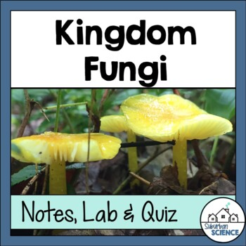 Characteristics of Kingdom Fungi: Powerpoint, Interactive