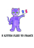 Kitten Flies to France: Story Comprehension/Social Narrati