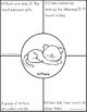Kitten Reading Passages