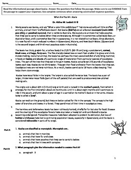 Koala_BEARS_WHAT_ARE_YOU_COMMON_CORE_READING_ASSESSMENT_DR