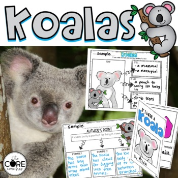Koalas- Informational Read Aloud, Lesson Plans and Activities