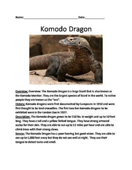 Komodo Dragon - lesson 2 page article questions vocabulary