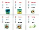 Korean Language Flash Cards Set - days, months, time, and more