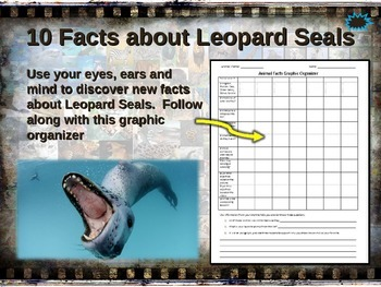 LEOPARD SEAL: 10 facts. Fun, engaging PPT (w links & free
