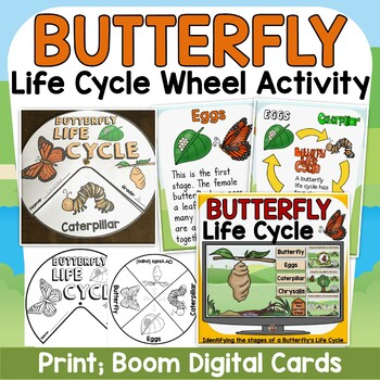 LIFE CYCLE OF A BUTTERFLY {posters/activity wheels/vocabul