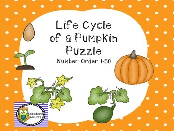LIFE CYCLE OF A PUMPKIN PUZZLE NUMBER ORDER 1-50