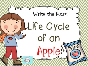LIFE CYCLE OF AN APPLE- WRITE THE ROOM
