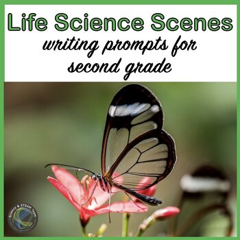 LIFE Science Scenes Writing Prompts and Vocabulary Cards f