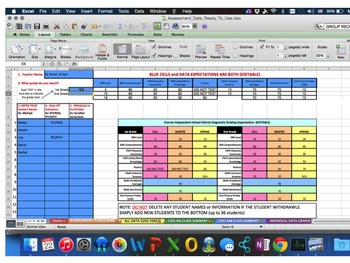 Excel Workbook Literacy and Math Data Monitoring (CISD) Gr