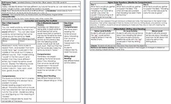 LLI BLUE kit Level M *w/ DIFFERENTIATION* Leveled Literacy