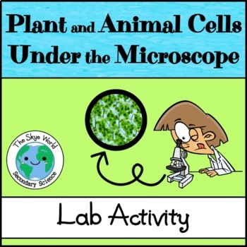 Lab - Plant and Animal Cells Under the Microscope