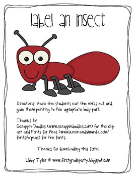 Label an Insect