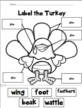 Label the Turkey