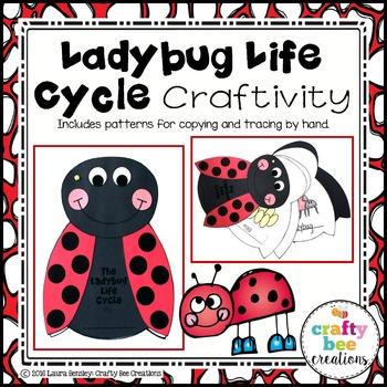 Ladybug Life Cycle Craftivity
