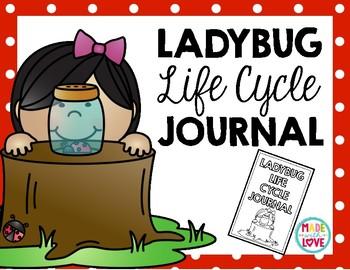 Ladybug Life Cycle Observation Journal