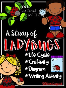 Ladybug Life Cycle Think Tank {Enrichment}