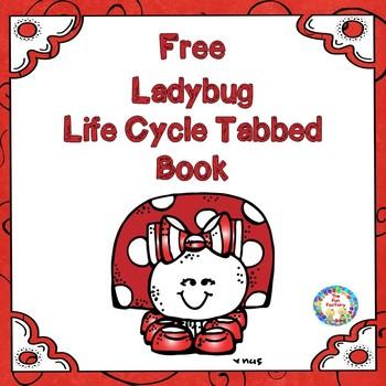 Ladybug Lifecycle Book